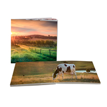 60pg 12x12inch (30x30cm) Pro Softcover Lay-Flat incl Delivery